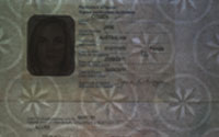 Australian emergency passport - size A4 - white transmitted light